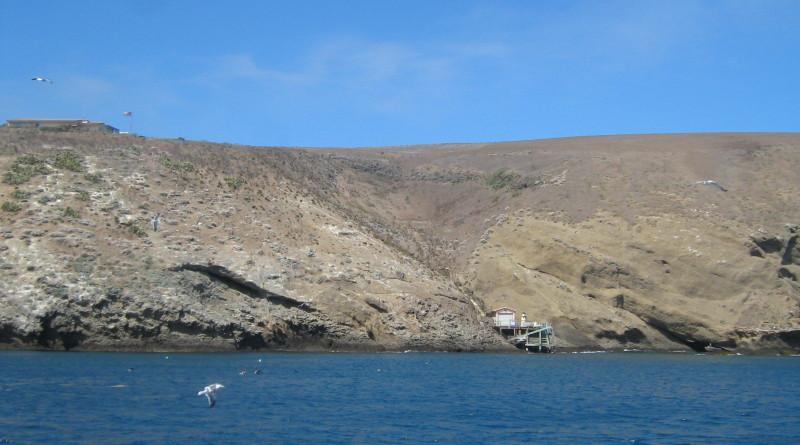 Santa Barbara Island Dock (BMacZero photo)