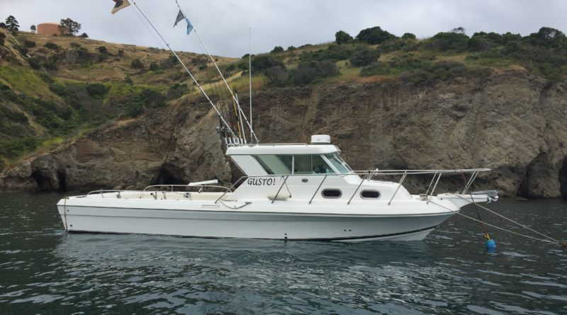 Catalina Island boat cruise