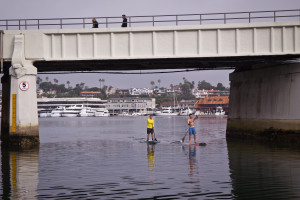 2 SUP Uses Newport - Nina K Jussila photo