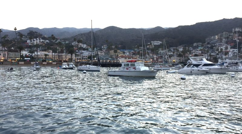 Avalon harbor in Catalina Island