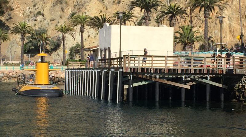 Avalon fuel dock pier on Catalina Island