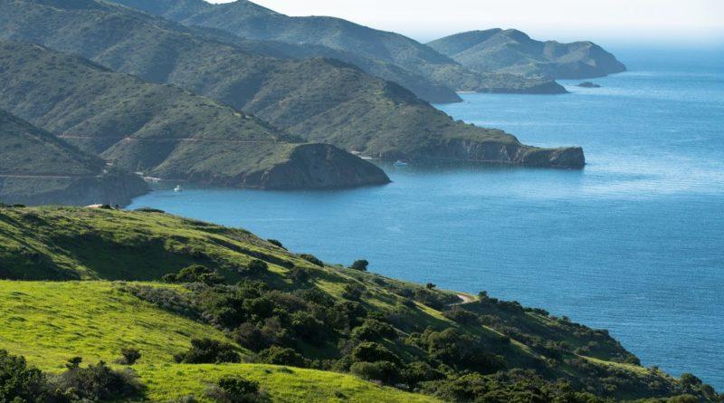Catalina Conservancy Catalina Island