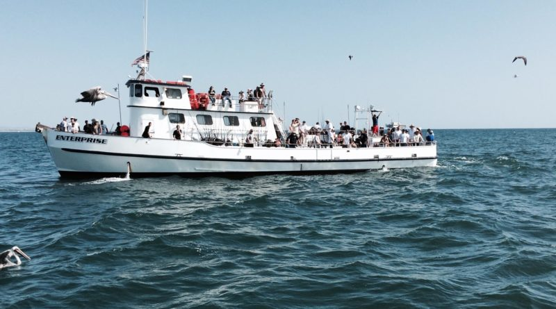Anglers aboard charter boat for fishing tournament