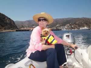 tiny dog aboard boat