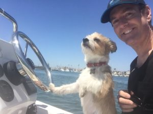 jack russell, corgi, terrier mix dog aboard boat