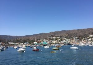 Avalon, Catalina