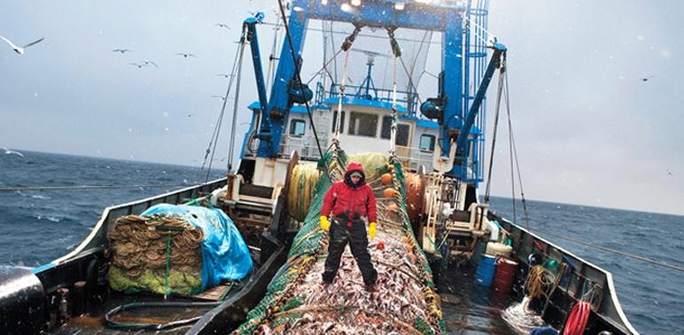 Marine fisheries bills veteoed