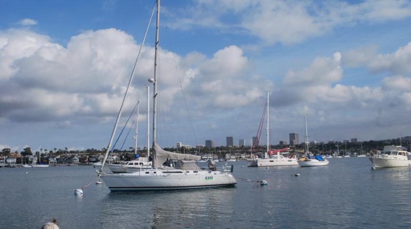 Newport Harbor Update