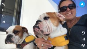 Dogs Aboard 7.14