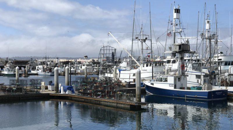 San Diego Tuna Market