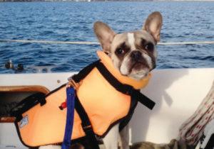 Titus sails the San Pedro Channel