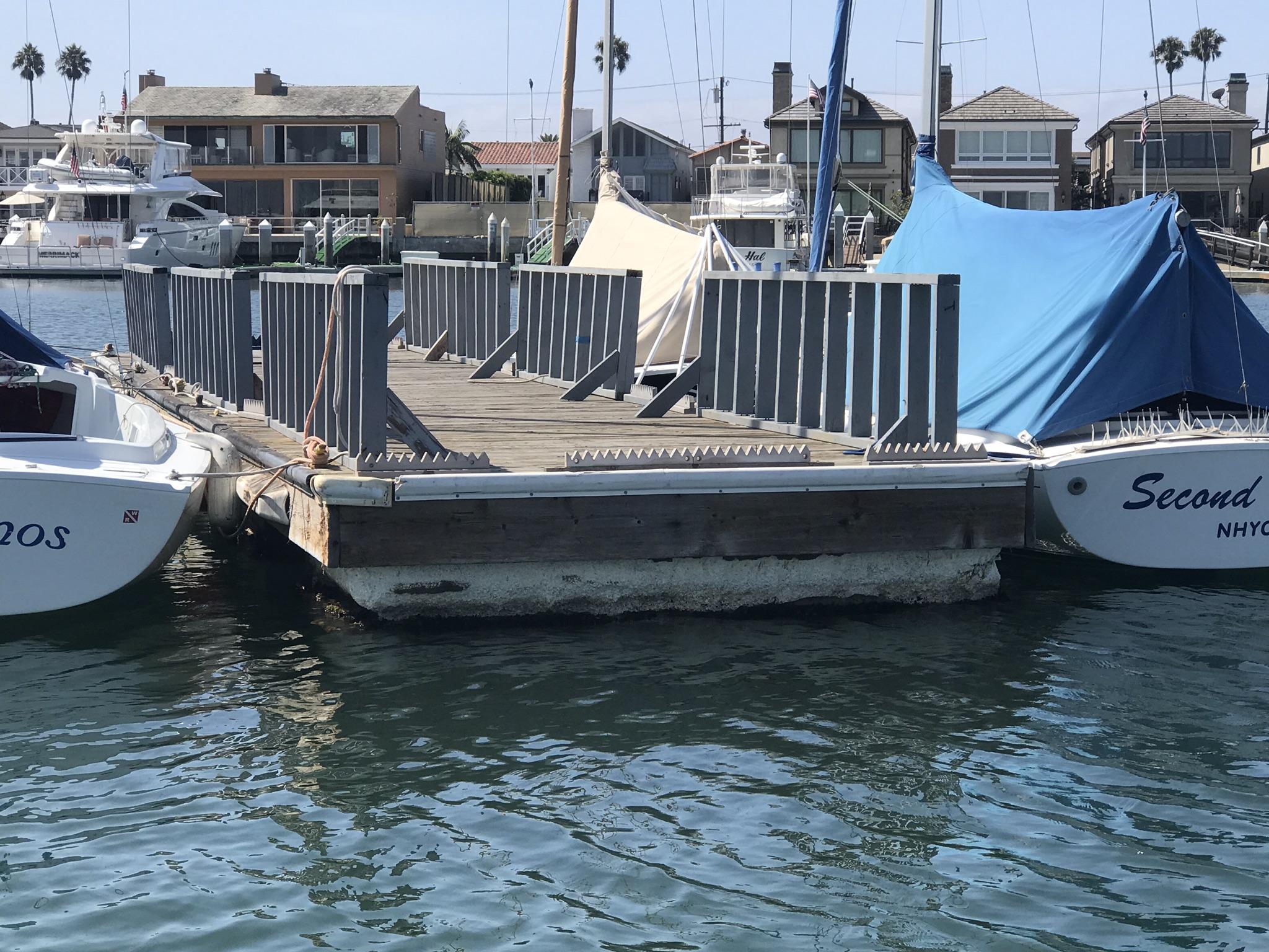 Sea Lion Deterrent
