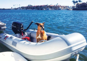 DINGHY RIDES IN HUNTINGTON HARBOUR WITH KONA
