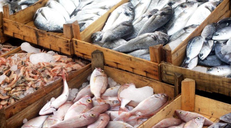 Seafood Ban