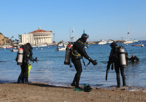 Catalina Diving Cleanup