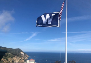 Cubs on Catalina Island