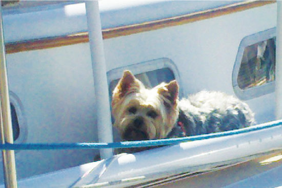MAXINE LOVES BOAT LIFE