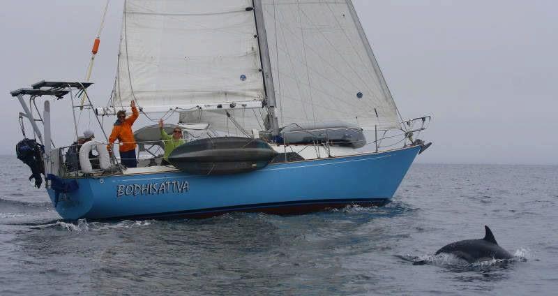 Annual Prison Break - Ventura Sailing Club photo
