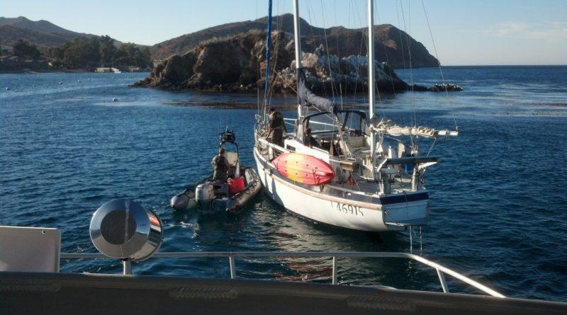 Excellent Water Skills Help Stop Marine Aquaria Poacher